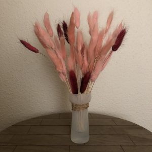 Fluffy Flame - Droogbloemen in vaas
