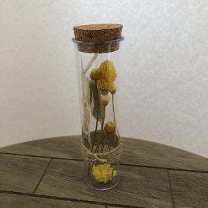 Droogbloemen in reageerbuis - Geel